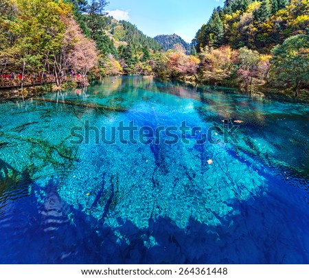 Lake with submerged tree trunks. Jiuzhaigou Valley was recognize by UNESCO as a World Heritage Site and a World Biosphere Reserve - China - stock photo