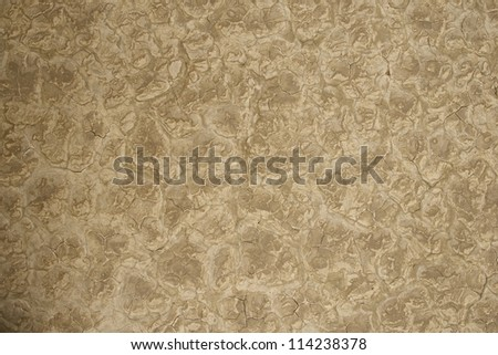 Lakebed Dry Nature Photo Background. Dry Cracked Lakebed. Deserts Photo Collection. - stock photo