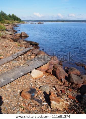 lakeshore - stock photo