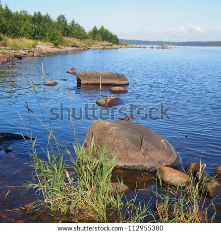 lakeshore - stock photo