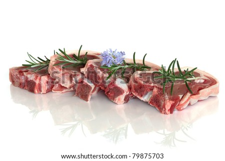 Lamb chop raw meat with rosemary herb flower leaf sprig isolated over white background. - stock photo