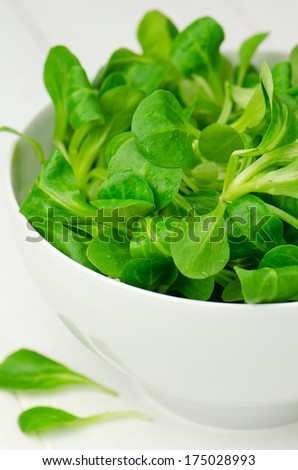Lamb's lettuce, close-up