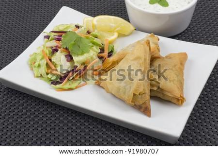 Lamb Samosas served with salad, mint raita and lemon slices. - stock photo