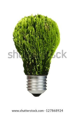 Lamp made of green plants. Ecology conception. Blue sky. - stock photo