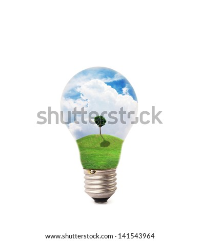 lamp of natural on isolate background