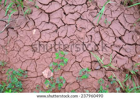 Land Dry Background - stock photo