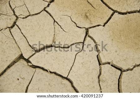 Land dry crack is a line on the ground.