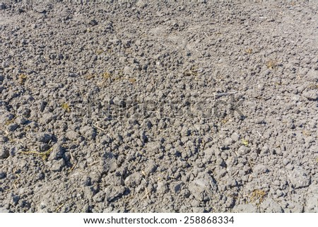 Land prepared for seeding, in sunny day - stock photo