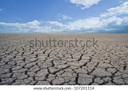 Land with dry and cracked ground. Desert. - stock photo