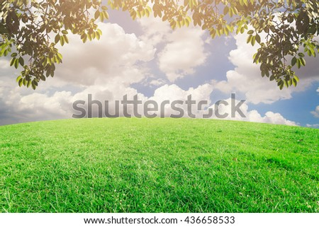 landscap sky and grass on background retouch