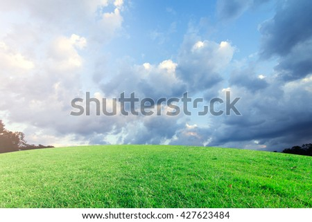 landscap sky and grass sunset on background