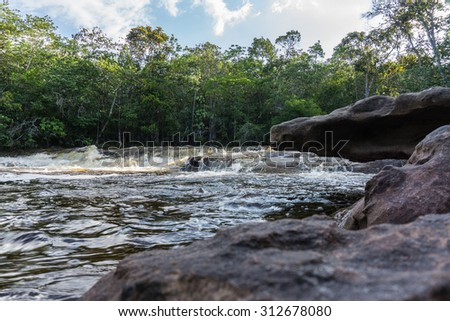 Landscape amazon rain forest - stock photo