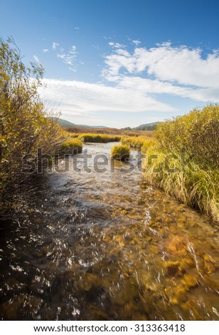 Landscape and creek flowing through Yellowstone National Park. - stock photo
