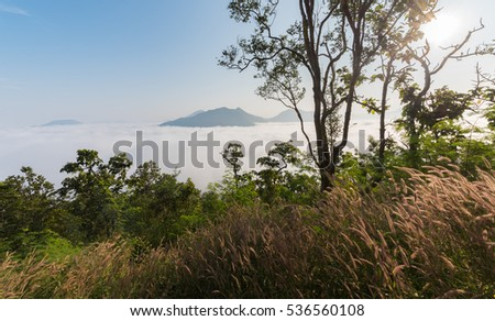 Landscape and sea of fog over Phu Thok Mountain at Chiang Khan ,Loei Province in Thailand