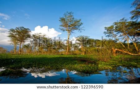 Landscape at Lake Naivasha in Kenya, Africa. Lake Naivasha is a freshwater lake in Kenya, lying north west of Nairobi, outside the town of Naivasha. - stock photo