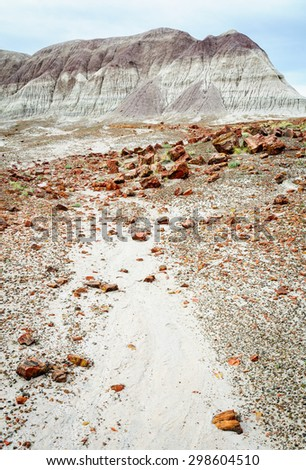 Landscape at Petrified Forest National Park - stock photo
