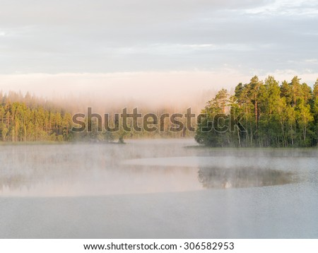 Landscape at the forest lake with morning fog
