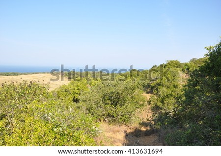 landscape at the Isimangaliso wetland park, St Lucia, South Africa - stock photo