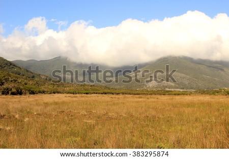 Landscape at Tidal River, Wilsons Promontory, Victoria, Australia - stock photo