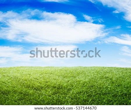 grass and sky backgrounds. landscape background of grass and sky backgrounds