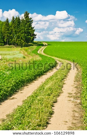 Landscape composed of a winding road, field and cloudy blue sky