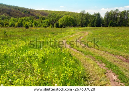 landscape consisting of a green grassy valley with forked footpath, and grassy hills with forest in the distance and blue sky with white clouds  - stock photo