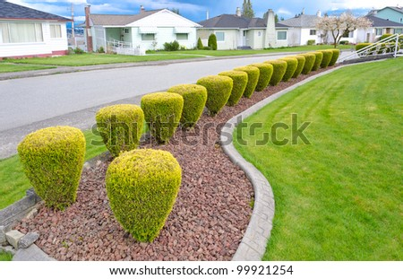 Landscape design. Nicely trimmed bushes at the front yard. Empty street and great quiet neighborhood. Vancouver. Canada. - stock photo