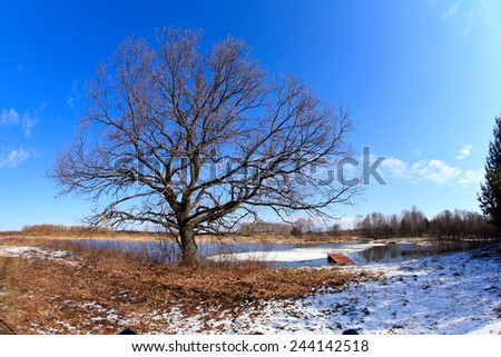 landscape early spring on the river on a sunny day - stock photo