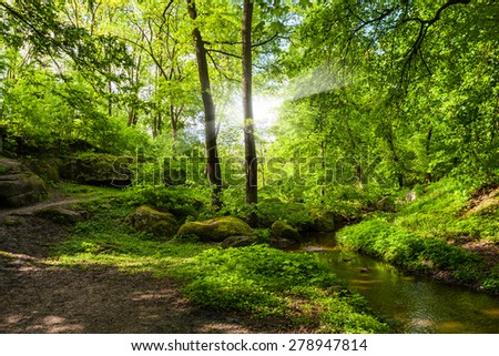 landscape forest and river with big stones on the shore - stock photo