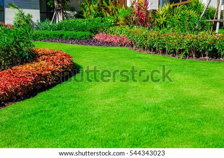 Front lawn stock images royalty free images vectors for Formally designed lawn