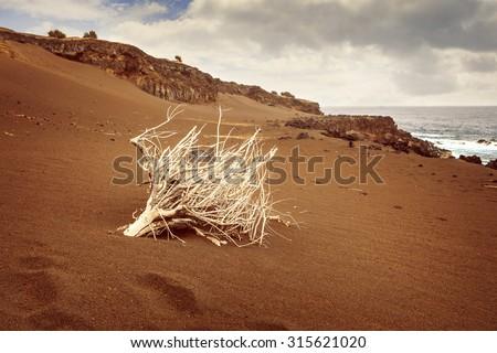 Landscape from Capelinhos, Faial Island, Azores, Portugal - stock photo