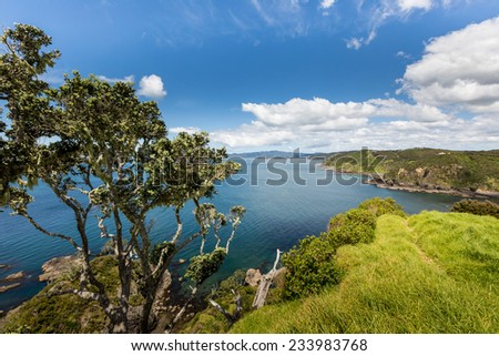 Landscape from Russell near Paihia, Bay of Islands, New Zealand - stock photo