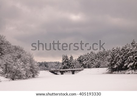 Landscape.frozen snowy bridge and lake, trees before the storm. - stock photo