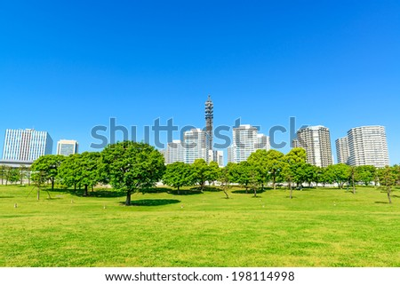 Landscape grass prospects the Minato-Mirai 21 buildings of landmark. - stock photo