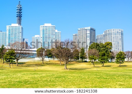 Landscape grass prospects the Yokohama city buildings of landmark.