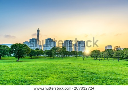 Landscape grass prospects the Yokohama City buildings of landmark at sunset.  - stock photo