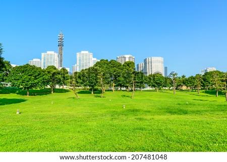 Landscape grass prospects the Yokohama Minato-Mirai 21 City buildings of landmark in clear weather. - stock photo