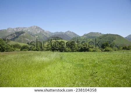 landscape green countryside valley and mountain next to Cangas de Onis Asturias Spain Europe - stock photo