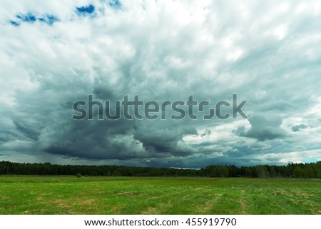 Landscape - Green wild meadow with flowers and blue sky with clouds, Knyszynska Forest, Poland - Europe