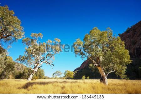 Landscape image of the beautiful Australian outback. - stock photo