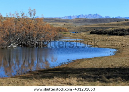 Landscape image of trees and pond at Fork River in Canterbury, New Zealand.