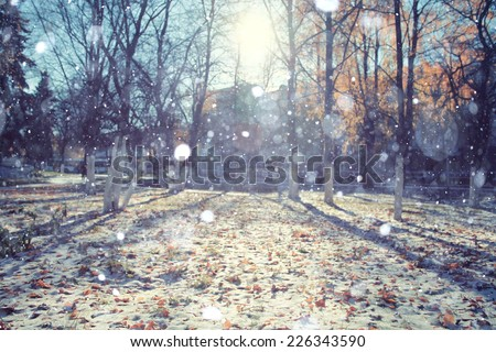 landscape in autumn park sun rays first snow - stock photo
