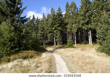Landscape in Czech mountains Jizerske hory in the autumn with a forest path - stock photo
