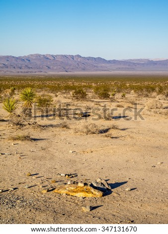 Landscape in Joshua Tree National Park, California, USA, where the Mojave and Colorado desert ecosystems meet.  - stock photo