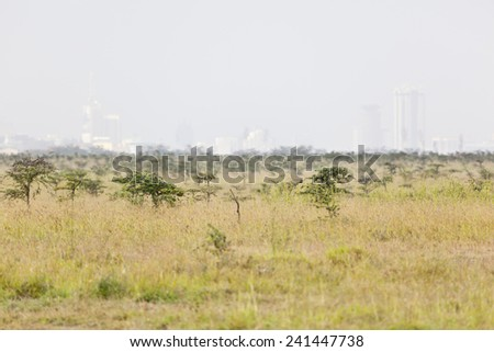 Landscape in Nairobi National Park in Kenya with the skyline in the background. - stock photo
