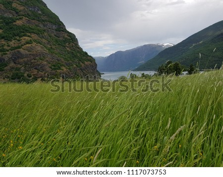 landscape in Norway
