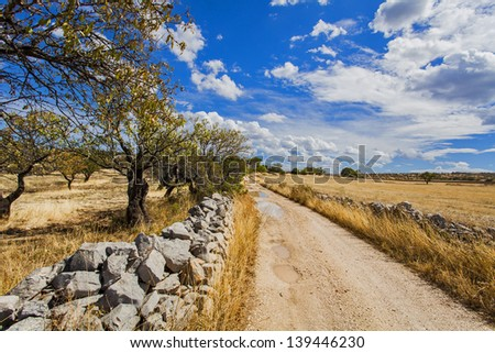 landscape in the countryside - stock photo