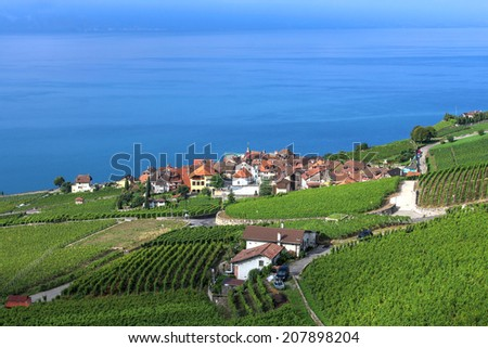 Landscape in the Lavaux vineyard region on the shores of Lake Geneva, Switzerland with the village of Rivaz in the focal point. - stock photo