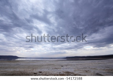 Landscape in the nature reserve with pink Lesser Flamingos on the lake on a beautiful overcast day in South Africa - stock photo