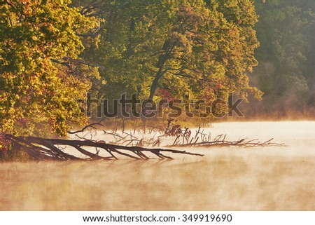 Landscape in the rays of sunrise - Morning on the lake, fog over the water, the water tumbled down tree forest on the coast